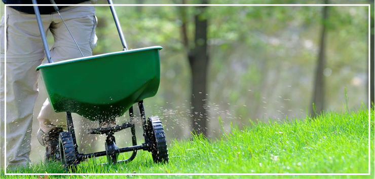 Lawn Care College Station TX