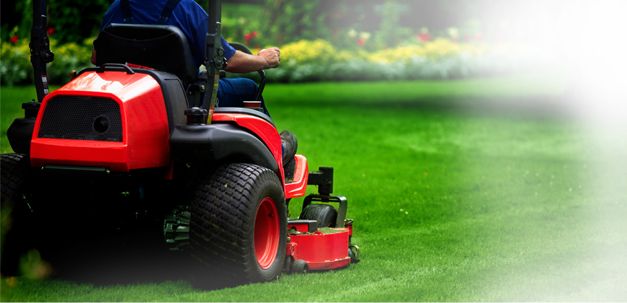 Lawn Care College Station Tx Landscaping College Station